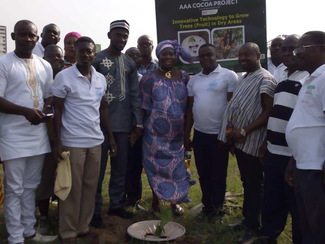 Offizieller Start des Kakao-Pflanzprojekts am Tette Quashie-Kreis