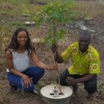 AAA pflanzt Bäume in Mafi-Anfoe