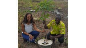 Aufforstung Afrika Erste Pflanzerfolge